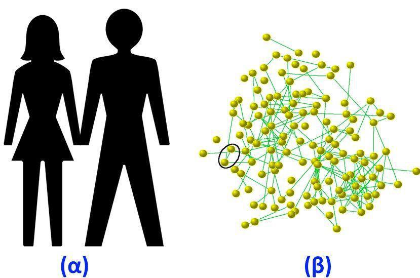 Οι κοινωνίες είναι δίκτυα ανθρώπων συνδεδεμένοι με φιλίες οικογενειακές σχέσεις και επαγγελματικούς δεσμούς
