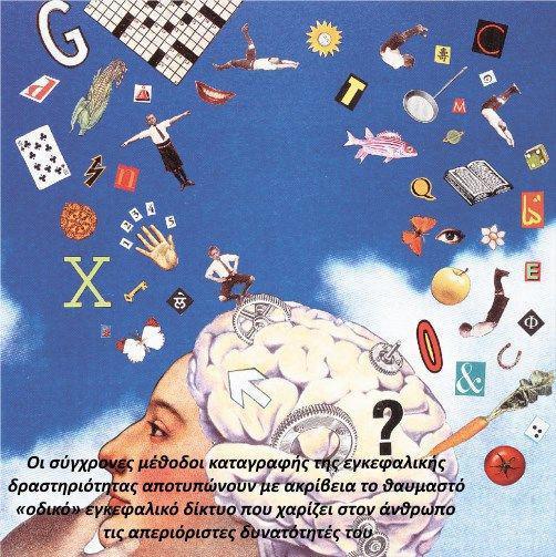 Πώς μεταφέρει πληροφορίες και αναρρώνει ο εγκέφαλος έπειτα από μια βλάβη.