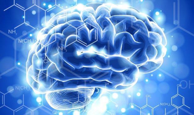 Τα βασικά 5 μέρη του εγκεφάλου και πώς μπορούμε να τα ενισχύσουμε