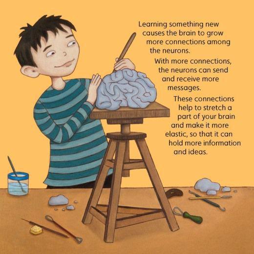 Νευροεπιστήμες και προσαρμοστικότητα εγκεφάλου.